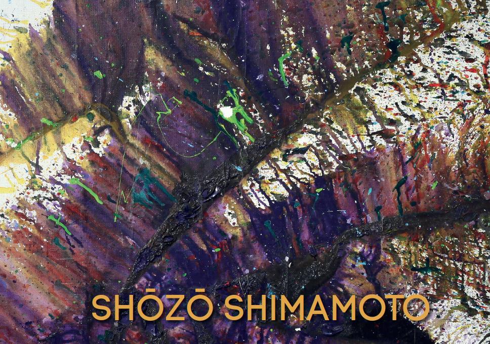 catalogo shimamoto