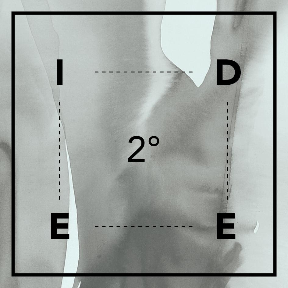 idee2-icon